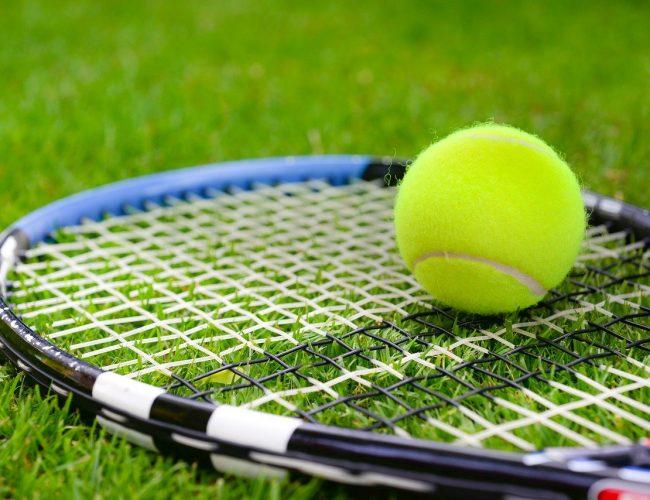 Så Spelar du Volley i Tennis